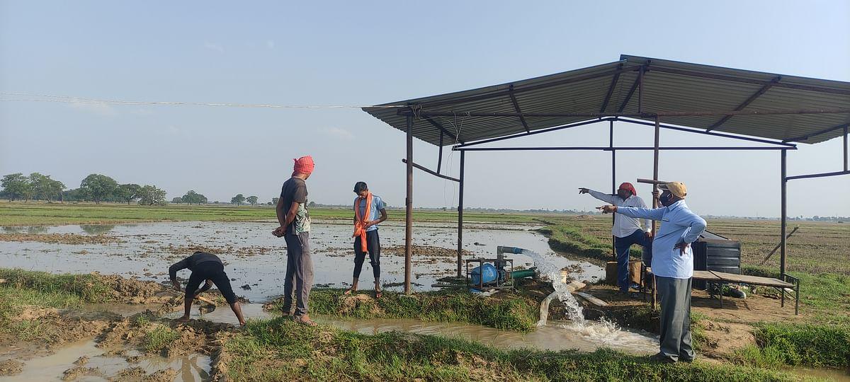 आरके सिन्हा के जैविक कृषि की शुरुआत से अब दिखने लगी बदलते भारत की तस्वीर