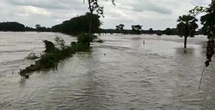 बिहार: बाढ़ की जद में आए कई जिलों के निचले इलाके