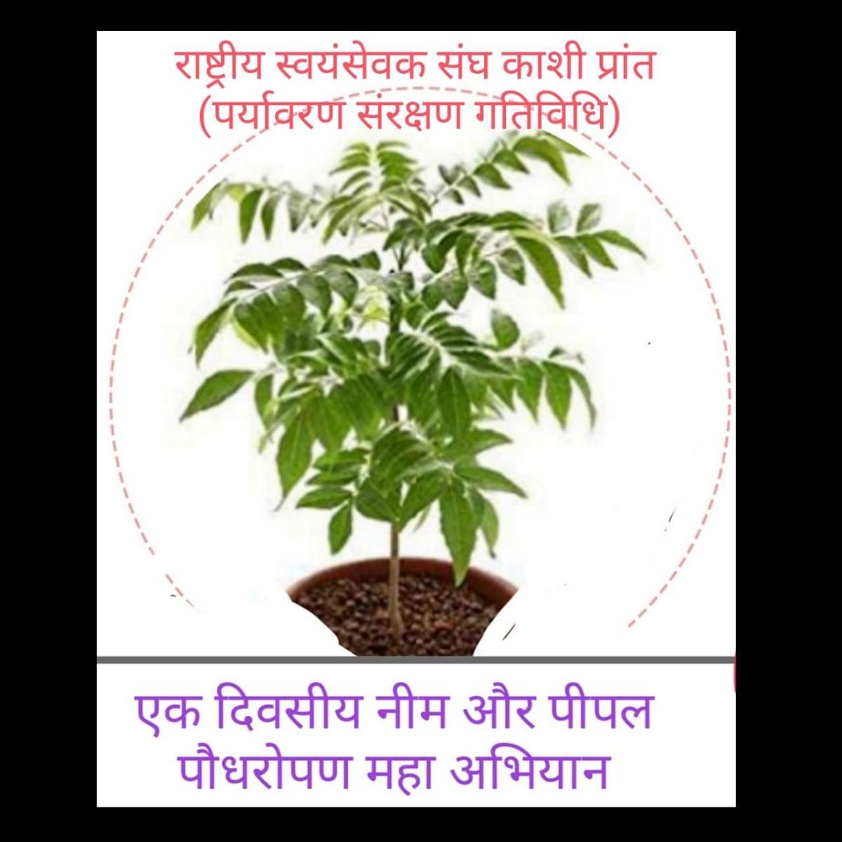 विश्व पर्यावरण दिवस पर आरएसएस काशी प्रांत चलाएगा पौधरोपण अभियान