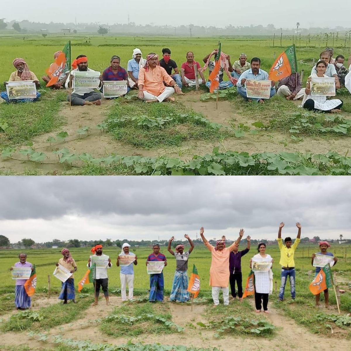 किसानों के हितों में भाजपाइयों ने दिया खेतों में धरना