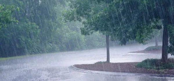 झारखंड में मानसून सक्रिय, पांच दिनों तक होगी बारिश