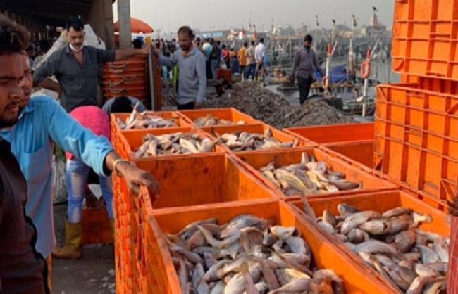 चीन ने छह भारतीय कंपनियों से सी फूड के आयात पर लगाई रोक