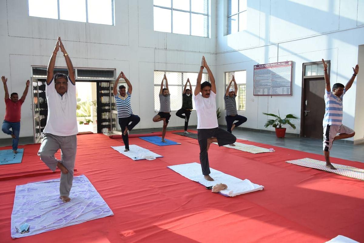शारीरिक और मानसिक स्वास्थ्य के संतुलन में योग सहायक - कुलपति