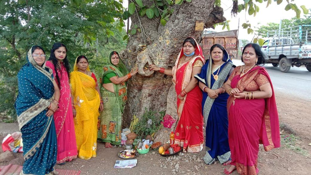 धमतरी : सुहाग की दीर्घायु के लिए महिलाओं ने की वट वृक्ष की पूजा