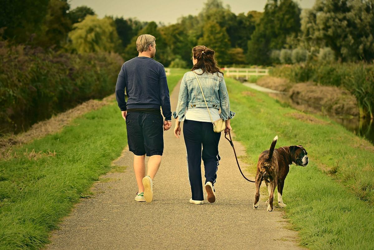 क्या एक दिन में 10,000 कदम चलने से आपको वजन कम करने में मदद मिलेगी? यहां जानें