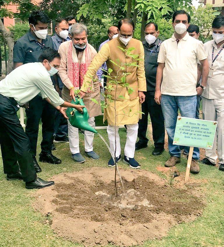 मुख्यमंत्री शिवराज ने दिल्ली के मध्यांचल भवन में लगाया मौलश्री का पौधा