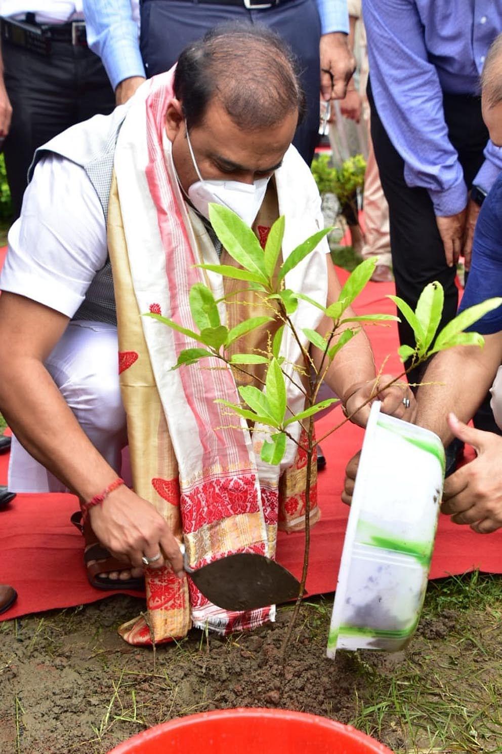 विश्व पर्यावरण दिवस पर सीएम ने लगाया रुद्राक्ष का पौधा
