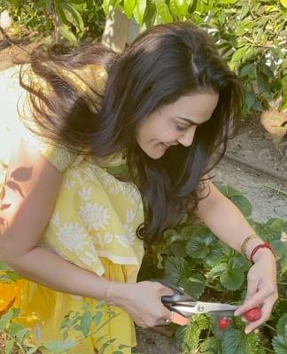 मुझे अपने घर के छोटे से बगीचे पर बहुत गर्व है : प्रीति जिंटा