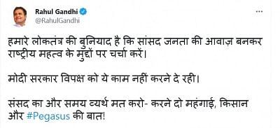 सांसदों को राष्ट्रीय महत्व के मुद्दों पर चर्चा करने की अनुमति नहीं दे रही सरकार : राहुल