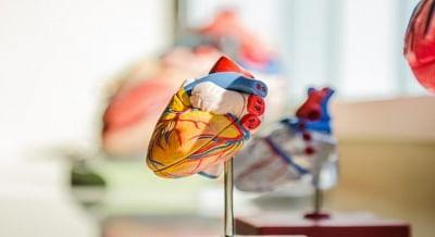 दिल से संबंधित टेस्ट से मिल सकता है कोविड रोगियों में मौत के जोखिम का संकेत : शोध