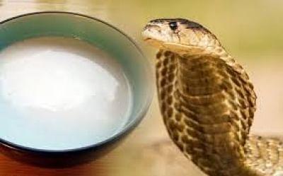 नाग पंचमी: सांपो को दूध पिलाना कितना ठीक? जानिए क्या कहता है पेटा इंडिया