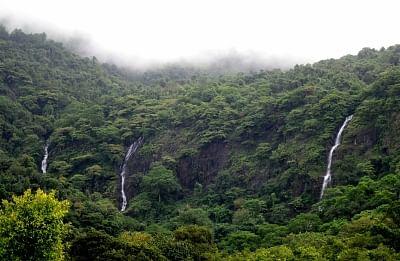 बॉम्बे हाईकोर्ट ने गोवा जलप्रपात के लिए स्थायी सड़क बिछाने पर रोक लगाई