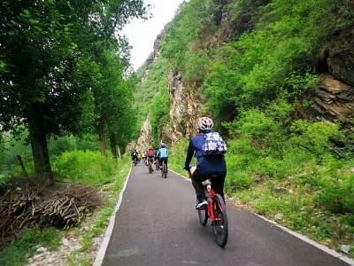 साइकिलिंग डे स्पेशल: दो अरब से ज्यादा लोग चलाते हैं साइकिल
