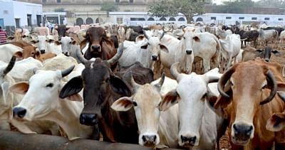 भारत के पशुधन क्षेत्र में सुधार के लिए गेट्स फाउंडेशन के साथ समझौता ज्ञापन पर हस्ताक्षर
