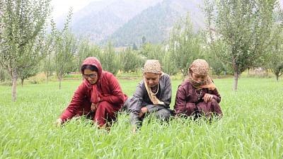 प्राकृतिक तरीके से कम लागत वाली खेती को अपना रहा है हिमाचल प्रदेश