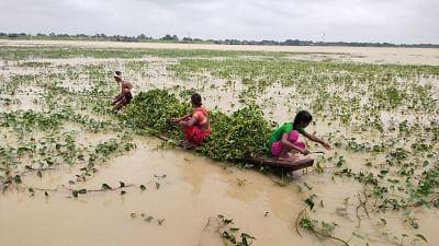बिहार : बाढ़ की स्थिति में सुधार, दरभंगा-समस्तीपुर रेलखंड पर ट्रेनों का परिचालन शुरू