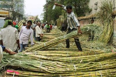 योगी सरकार ने गन्ने का खरीद मूल्य 25 रुपये प्रति क्विंटल बढ़ाया