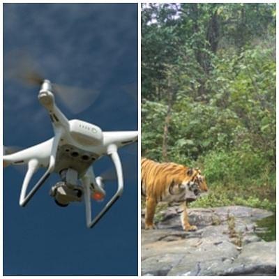 मप्र में वन्य प्राणी संरक्षण के लिए ड्रोन तकनीक का सहारा