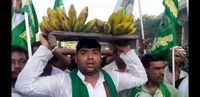 बिहार : बंद समर्थक भैंस लेकर सड़क पर उतरे, राजद विधायक ने सिर पर केला रख किया प्रदर्शन
