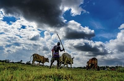 मप्र में खाद पर संग्राम, किसानों पर लाठीचार्ज