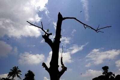 दिल्ली-एनसीआर में मौसम साफ, न्यूनतम तापमान में कमी की संभावना