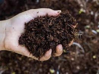 चीनी जैविक खाद पर प्रतिबंध के बाद श्रीलंका ने भारत का किया रुख