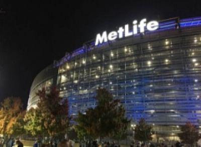 पीएनबी मेटलाइफ में एल्प्रो और आईजीई की हिस्सेदारी खरीदेगी मेटलाइफ