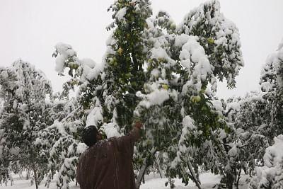 जम्मू-कश्मीर में भारी बर्फबारी से पहले घुसपैठ की कोशिशें बढ़ेंगी : इंटेल एजेंसियां