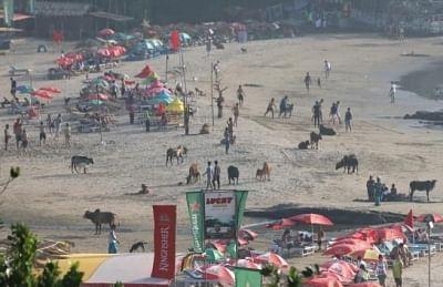 इस साल गोवा का पर्यटन सीजन अच्छा रहेगा: सीएम