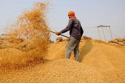 किसानों को धान के एमएसपी के रूप में 11099.25 करोड़ रुपये प्राप्त हुए : केंद्र