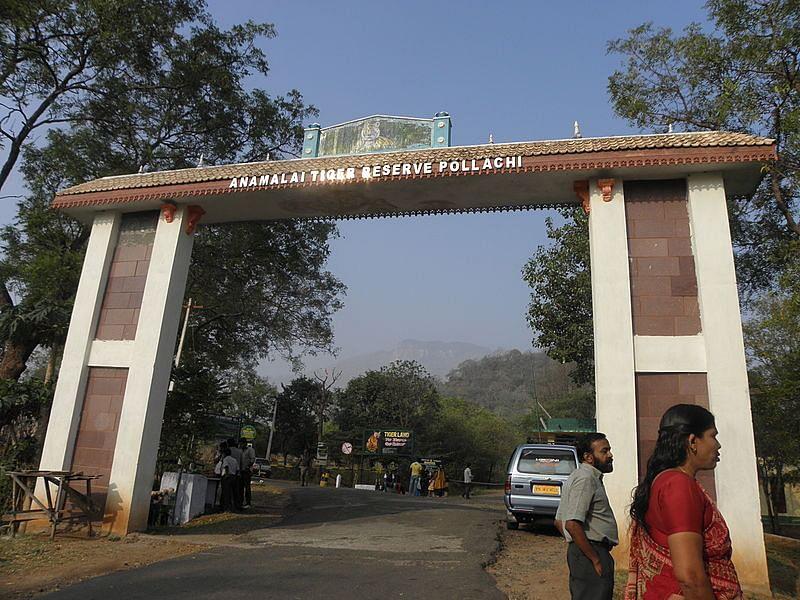 अन्नामलाई वन्यजीव अभ्यारण्य के बारे में जानकारी - Annamalai Wildlife Sanctuary in Hindi