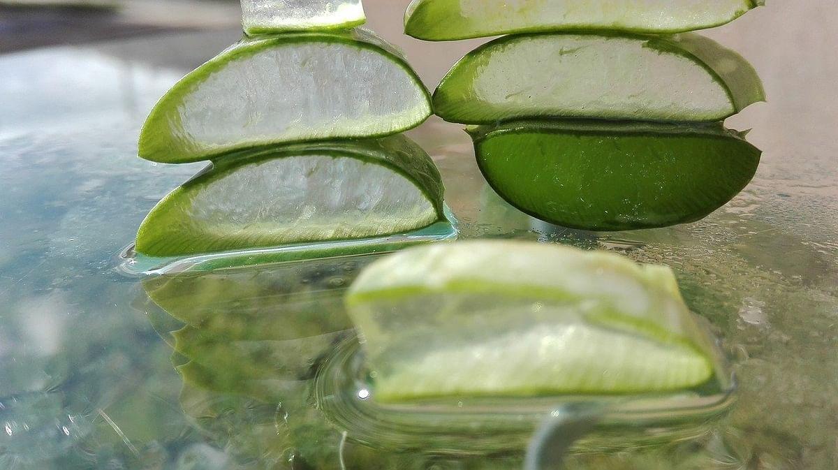 एलोवेरा जूस के फायदे - Benefits Of Aloe Vera juice in Hindi