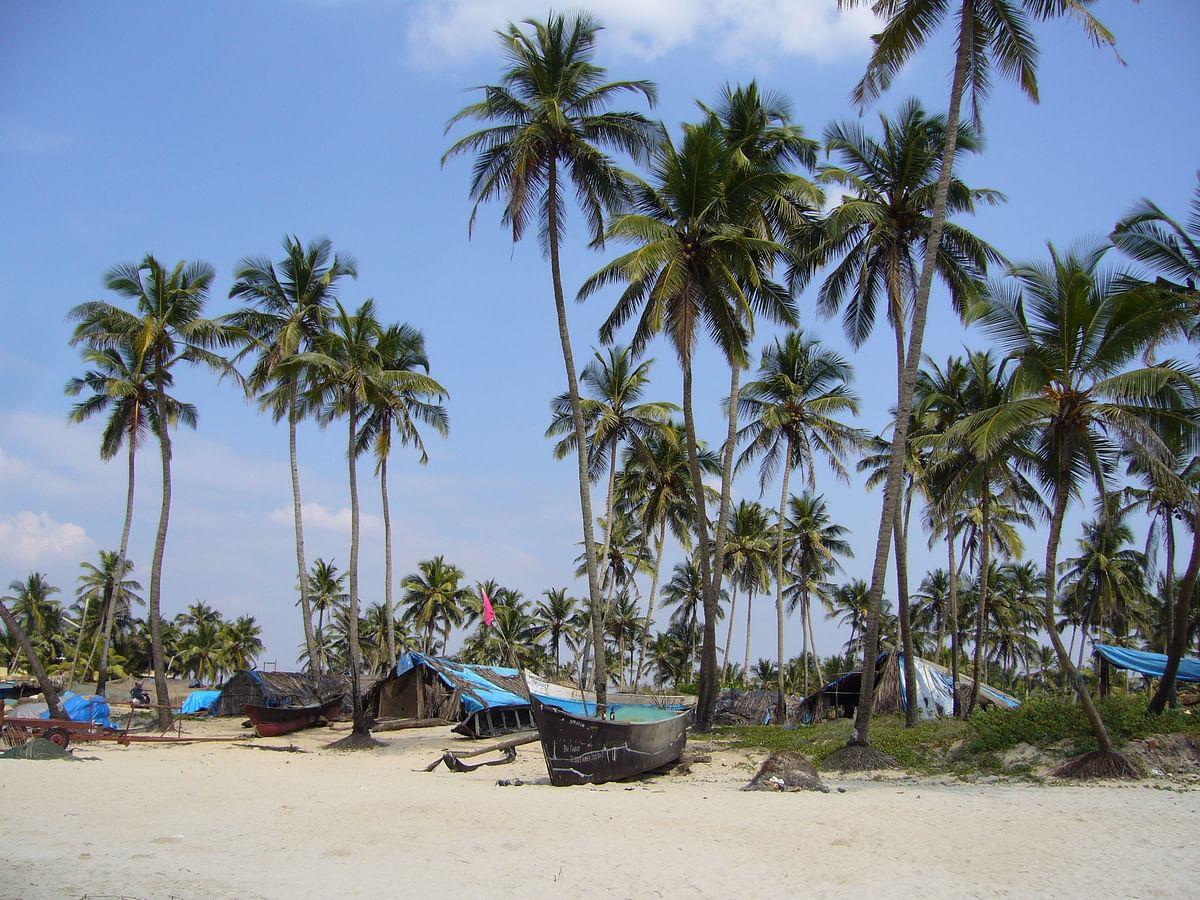कोलवा बीच के बारे में जानकारी - Colva Beach in Hindi