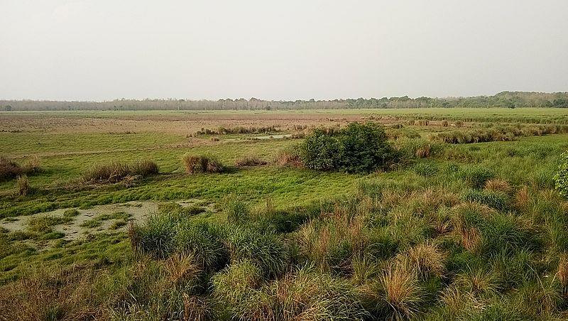 दुधवा राष्ट्रीय उद्यान के बारे में जानकारी - Dudhwa National Park Uttar Pradesh in Hindi