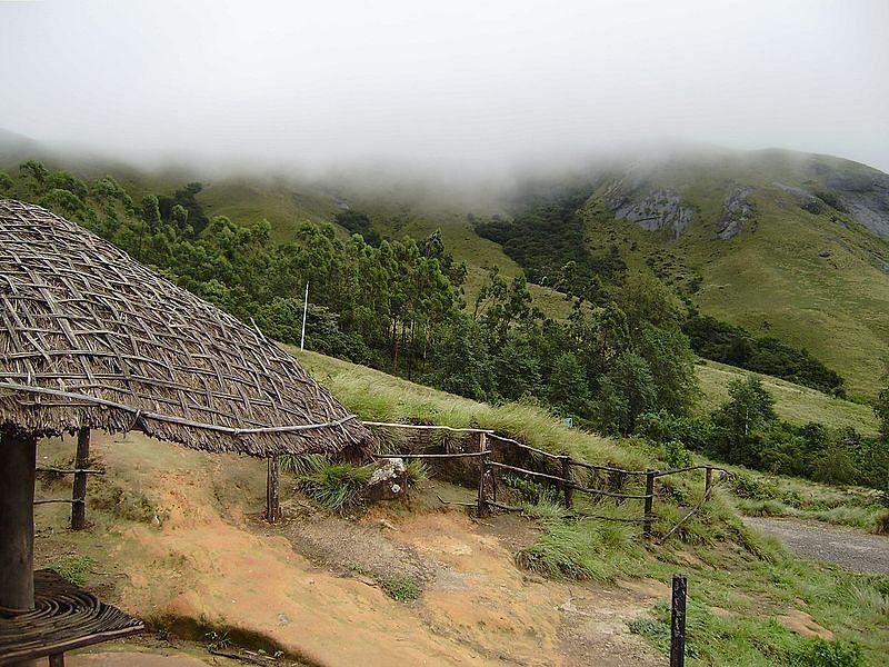एराविकुलम राष्ट्रीय उद्यान के बारे में जानकारी - Eravikulam National Park in Hindi