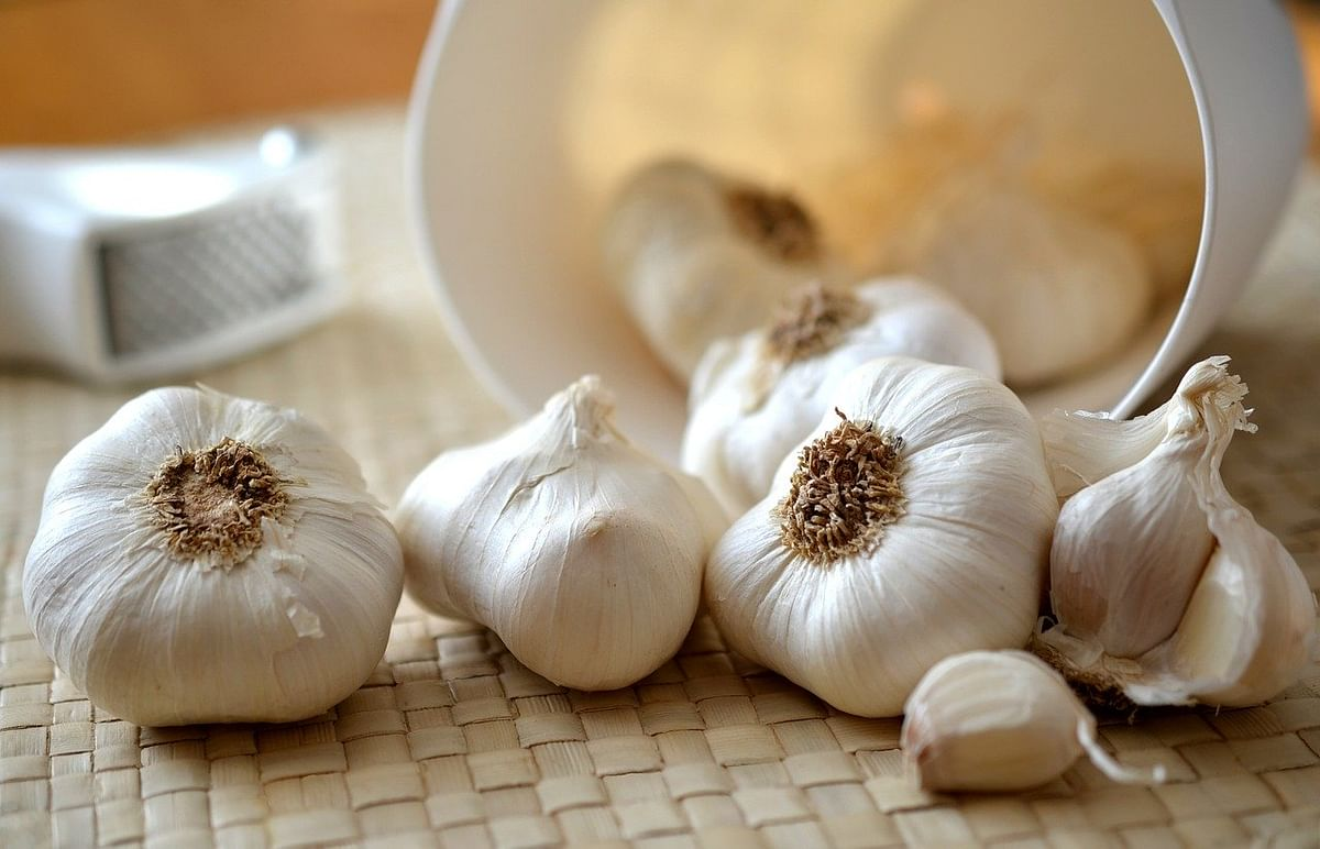लहसुन के फायदे और नुकसान - Garlic (Lahsun) Benefits and Side Effects in Hindi