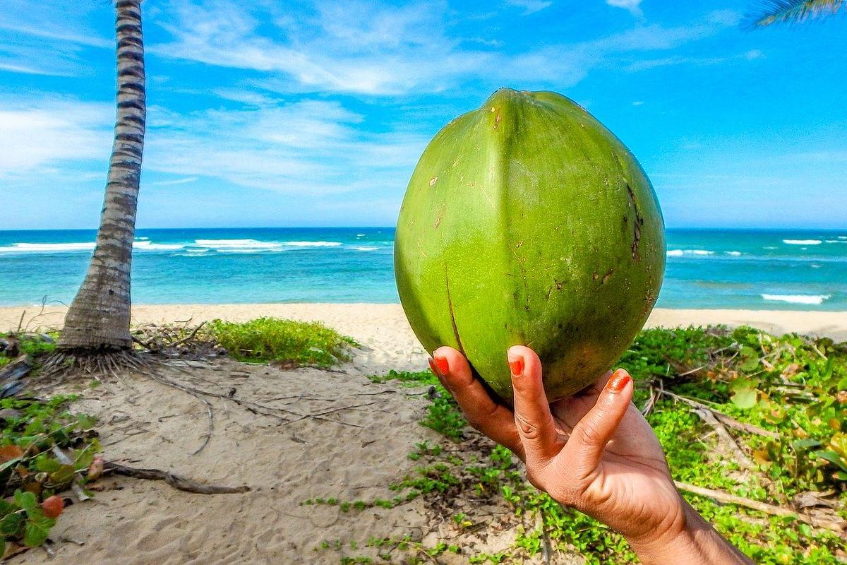 नारियल पानी के फायदे - Coconut Water Benefits in Hindi