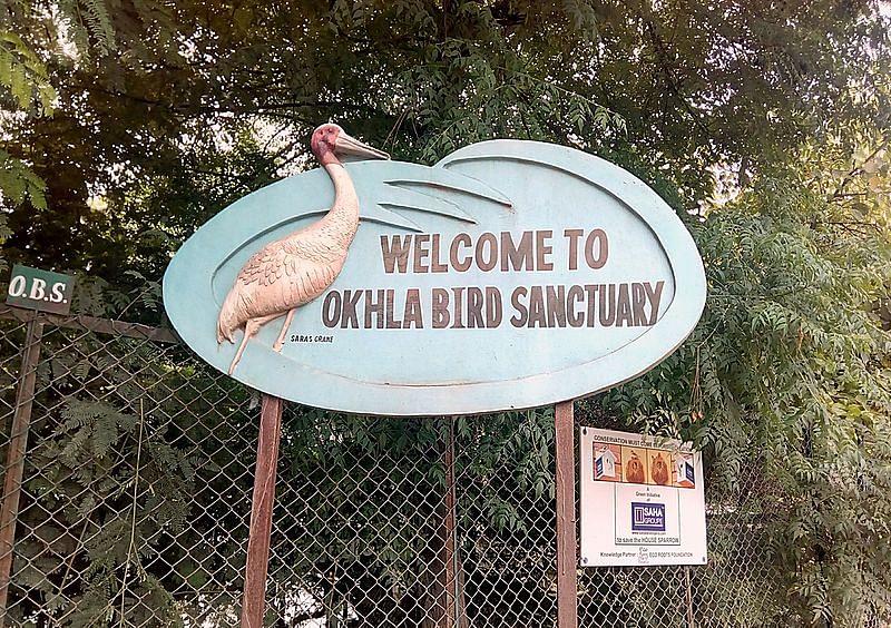 ओखला पक्षी अभयारण्य के बारे में जानकारी - Okhla Bird Sanctuary in Hindi