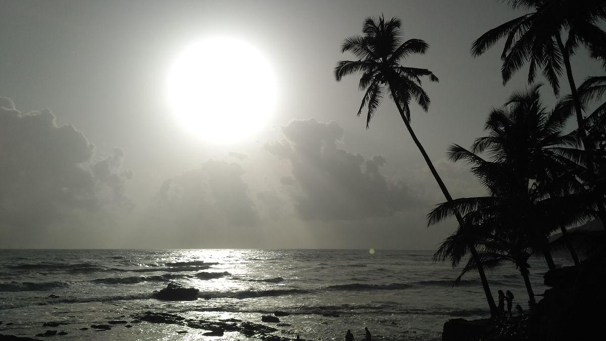 पालोलेम बीच के बारे में जानकारी - Palolem Beach in Hindi