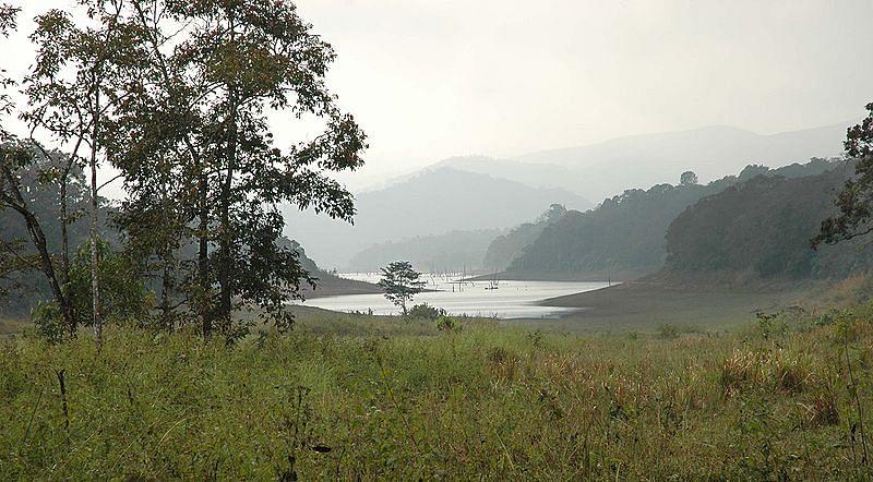 पेरियार नेशनल पार्क के बारे में जानकारी - Periyar National Park Kerala in Hindi