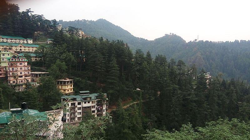 समर हिल के बारे में जानकारी - Summer Hill in Hindi