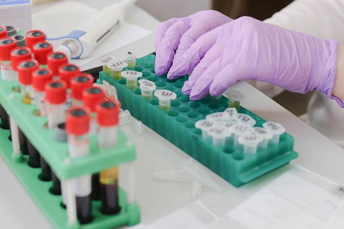 जीका वायरस - Zika Virus in Hindi