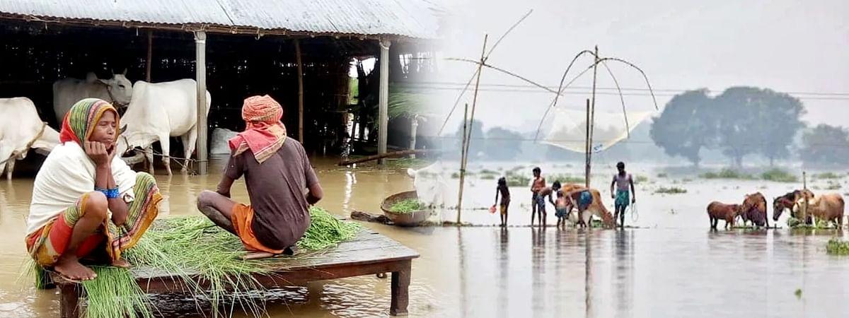मध्यप्रदेश में किसानों की आफत बनी भारी बारिश