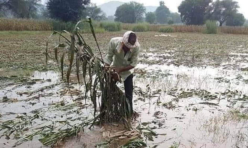 विदिशा: लगातार बारिश ने फिर लोगों के जीवन को किया अस्त-व्यस्त, फसलें हुई बर्बाद