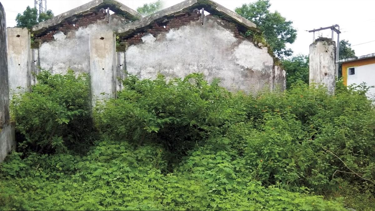 बुरहानपुर: कटीली झाड़ियों से घिरा शासकीय स्कूल का जर्जर भवन