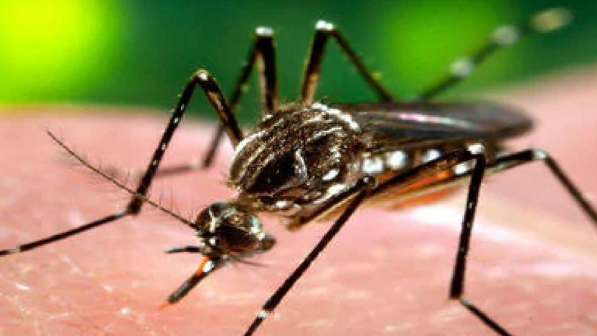 राजधानी में बढ़ा डेंगू का प्रकोप, एक की मौत