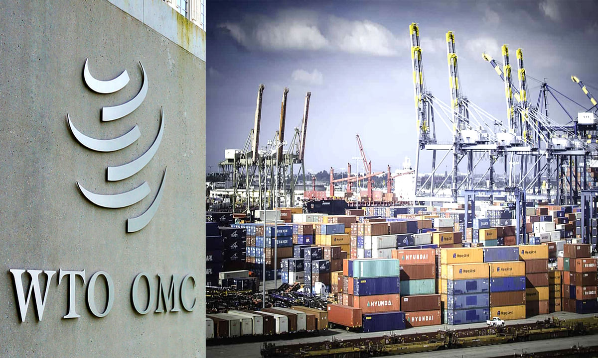 WTO Decision on Export Subsidy