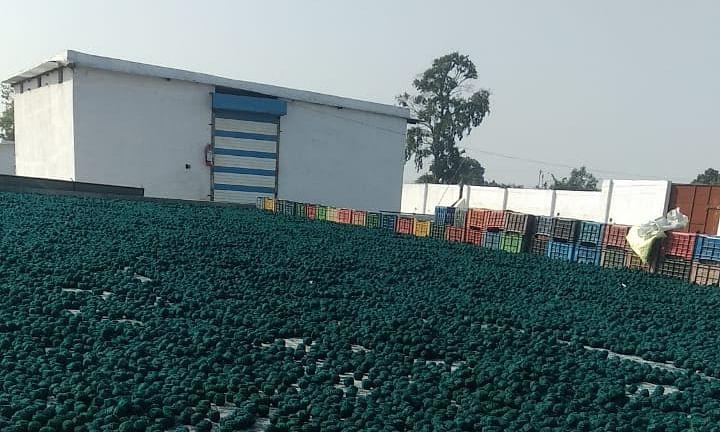 सुरक्षा इंतजामों के अभाव में अवैध पटाखा फैक्ट्री में विस्फोट
