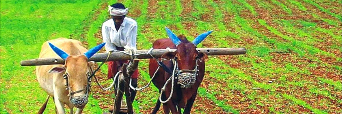 पीएम किसान योजना - भारतीय किसान का संबल