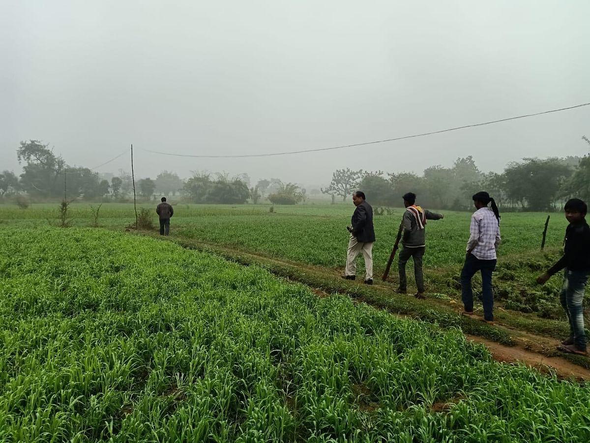 किसानों के खेत